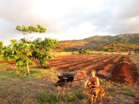 farm 2010